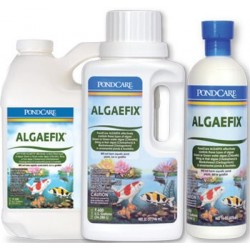 API Pond Care AlgaeFix 16oz