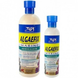 API AlgaeFix 16oz