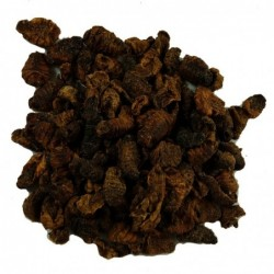 Dried Silkworm Pupae