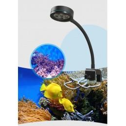 Q2-B Blue LED Light