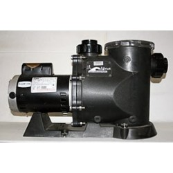 Wlims Dragon Series - 1/3HP, 6426gph